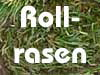 Orthey-Rollrasen